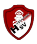 Hagenower SV